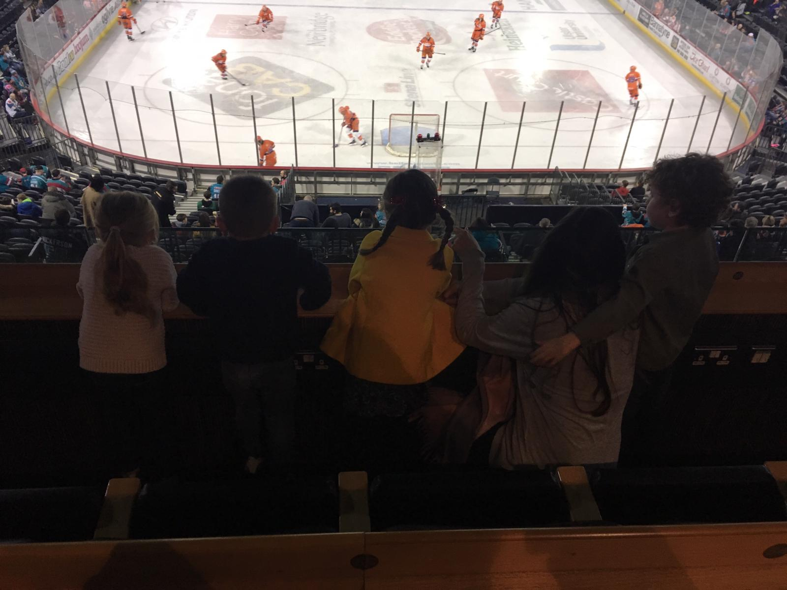 MIS & Guests at Belfast Giants against Sheffield Steelers at The SSE Arena